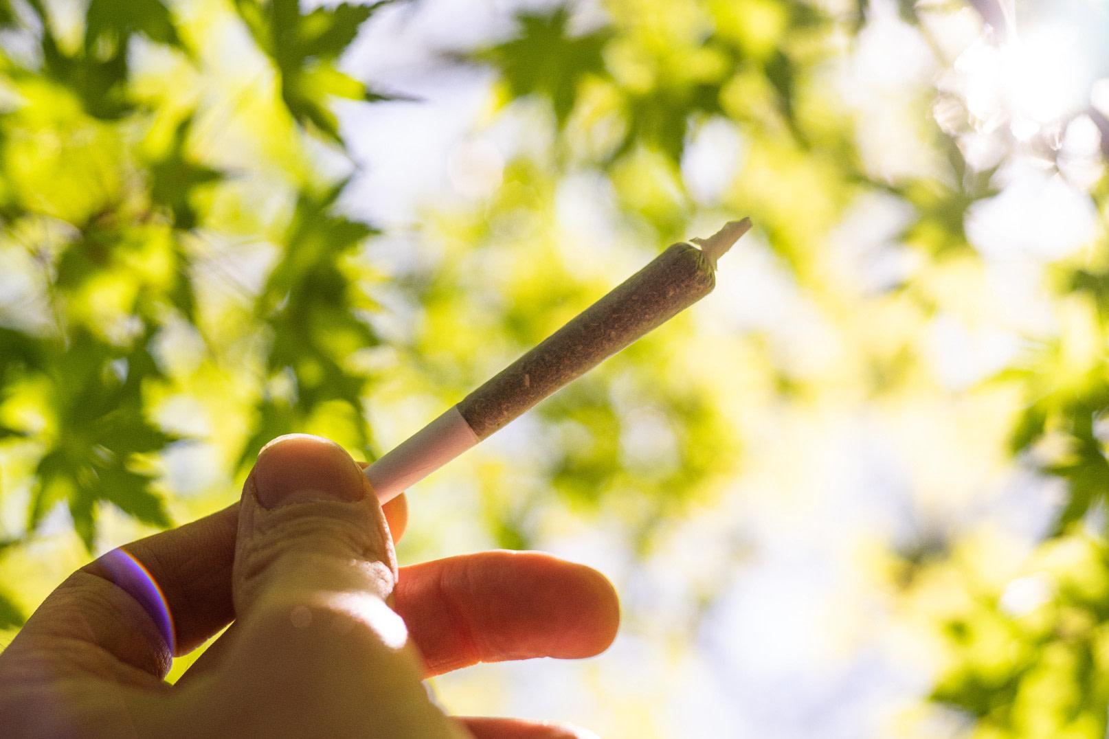 The Top 4 Benefits of Smoking CBD Flower