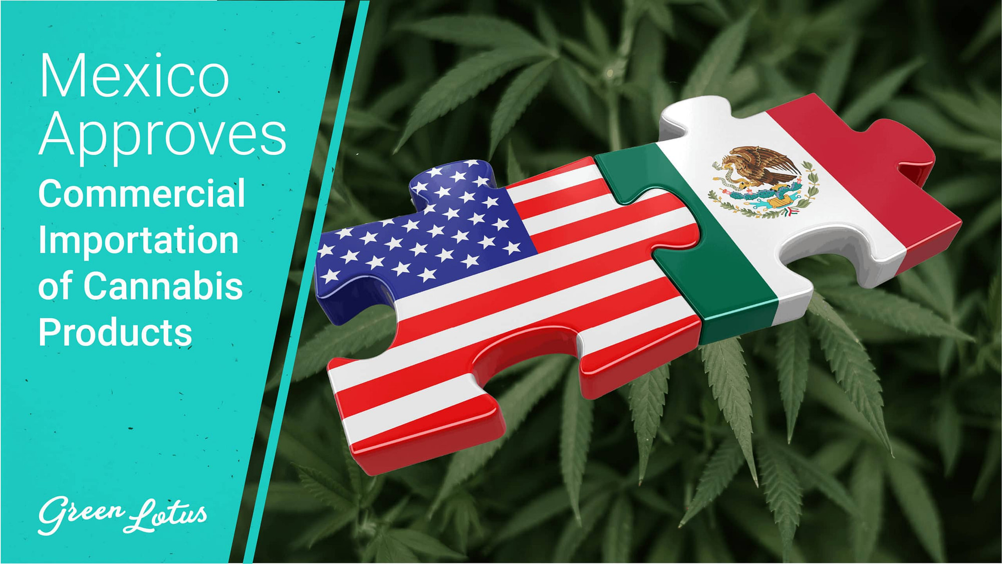 Mexico Approves the Commercial Importation of Cannabis Products