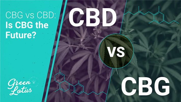 CBG vs CBD: Is CBG the Future?